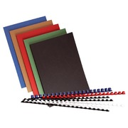 Success kit 100 binders assorted colours
